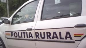 Politie rurala, stiri, botosani