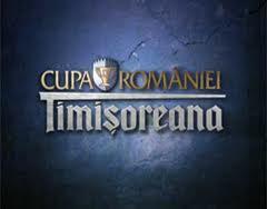 Cupa Romaniei, stiri, botosani