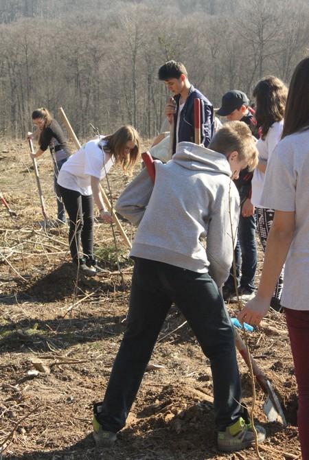 elevi de la Palatul Copiilor Botosani plantand copaci