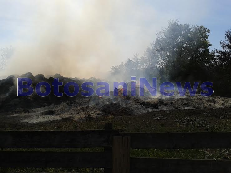 https://botosaninews.ro/wp-content/uploads/2015/05/incendiu-baloti-pe-proprietatea-lui-Liviu-Martiniuc-Saveni.jpg