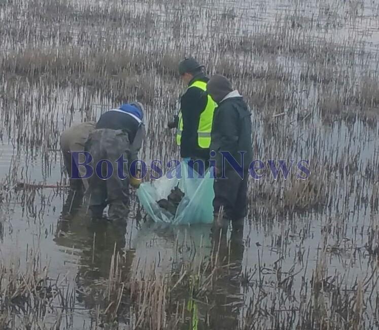 barbat gasit mort in iaz la Paltinis -Botosani