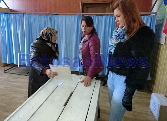 alegeri locale partiale, nicseni, stiri, botosani