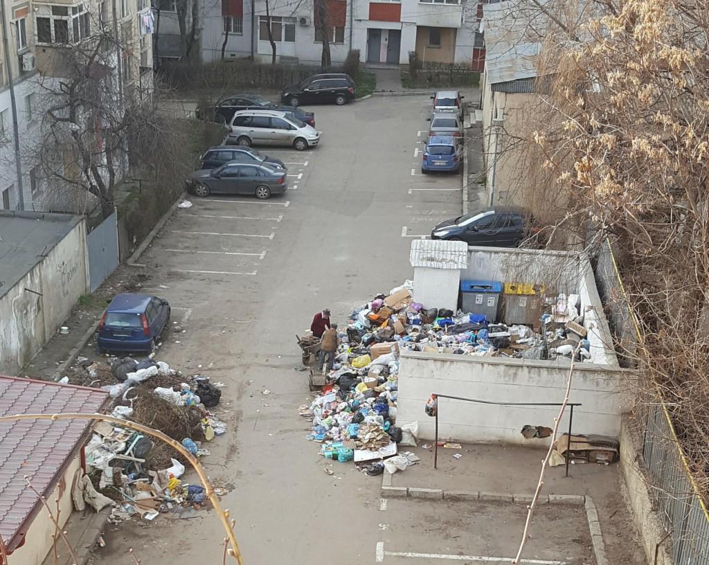 gunoi, strada dimitrie negreanu , stiri, botosani