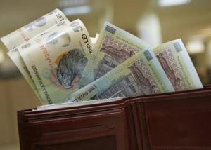 portofel cu bani, stiri, botosani