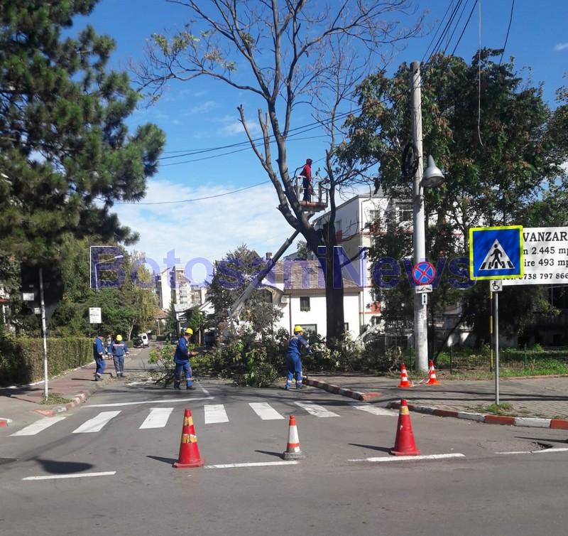 strada armoniei, stiri, botosani, strada blocata, politia locala